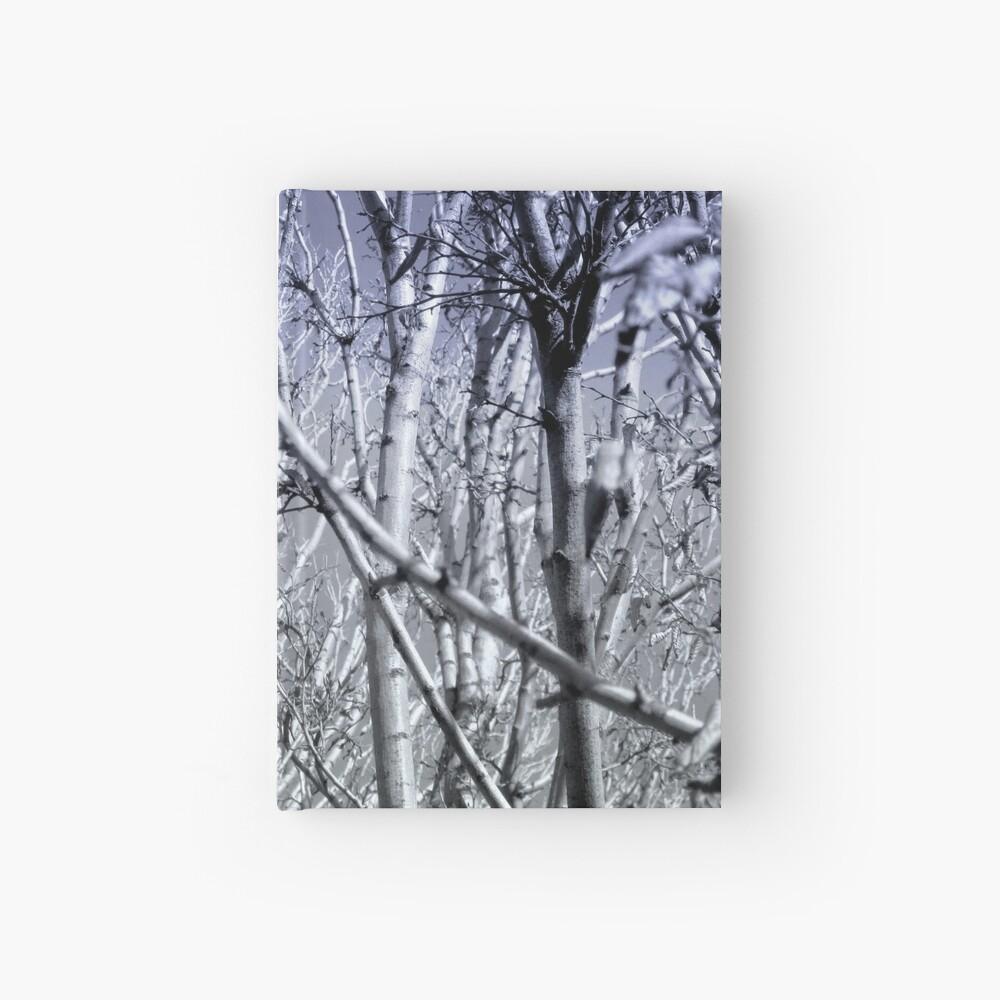 Hoher Kontrast Wald Foto Notizbuch