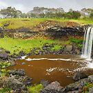Wannon Falls, Hamilton, Victoria, Australia by Michael Boniwell