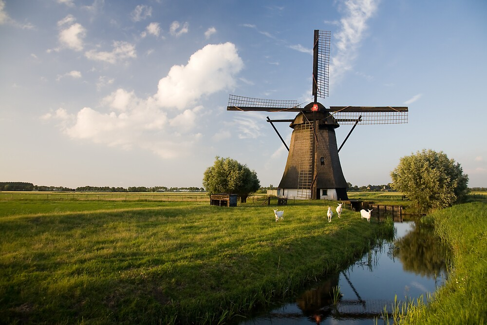 Oude Doornse Molen by Ryan Young