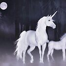 Unicorns in the mist  by Valerie Anne Kelly