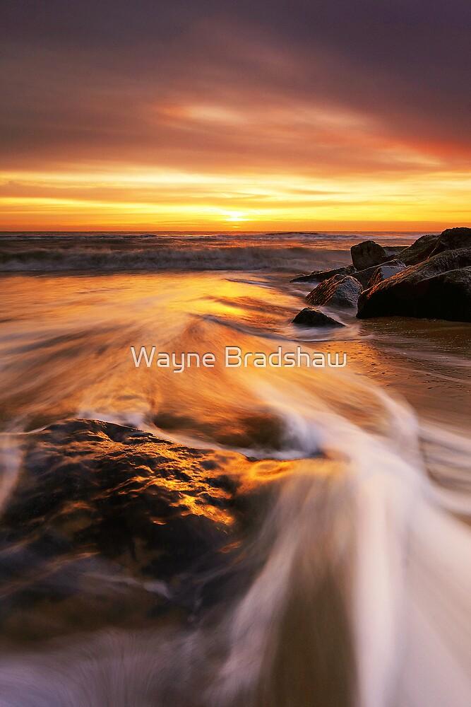 Southwold Beach Suffolk 1. by Wayne Bradshaw