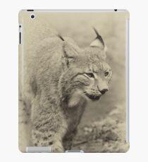 Beautiful lynx - schöner Luchs iPad Case/Skin