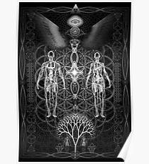 Duality Kundalini Symbolic Poster