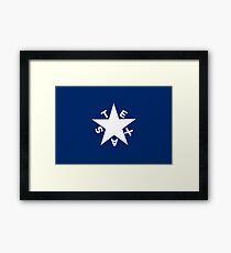 TEXAS, Zavala Flag, Historic American Flags Framed Print