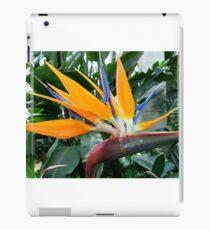 Exotic Bird Of Paradise iPad Case/Skin