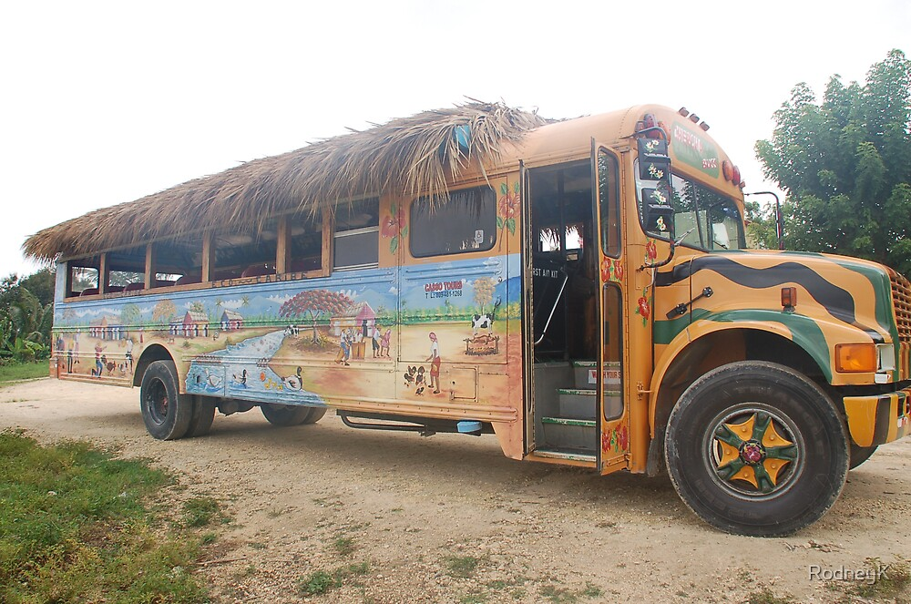 Punta Cana Party Bus by RodneyK