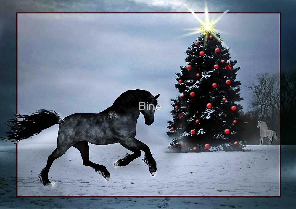 Happy Holidays !  by Bine