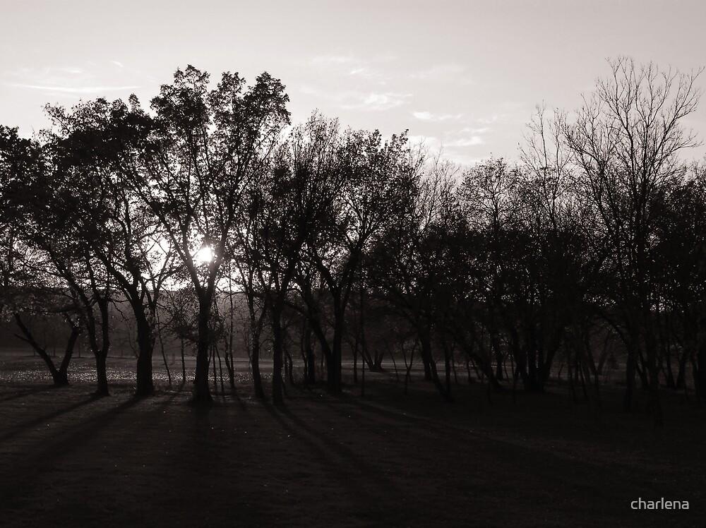 Twilight by charlena