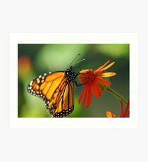 Good Nectar Art Print