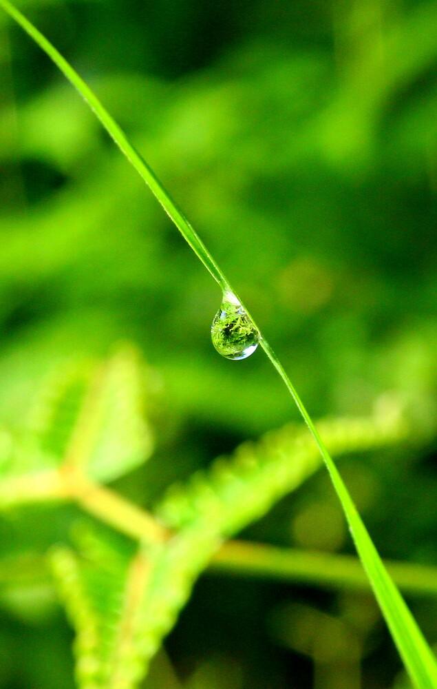 drop of water by khairusy