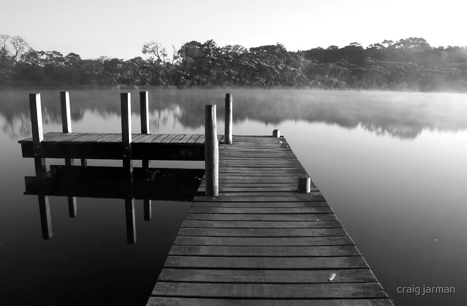 need to jump in... by craig jarman