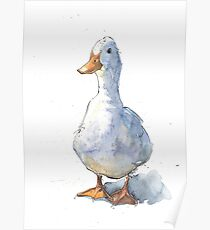 Greetings White Duck! Poster