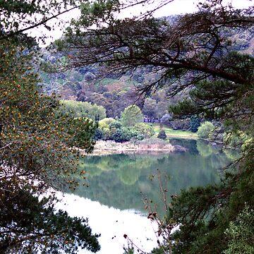 Valley lake by donkeynomad