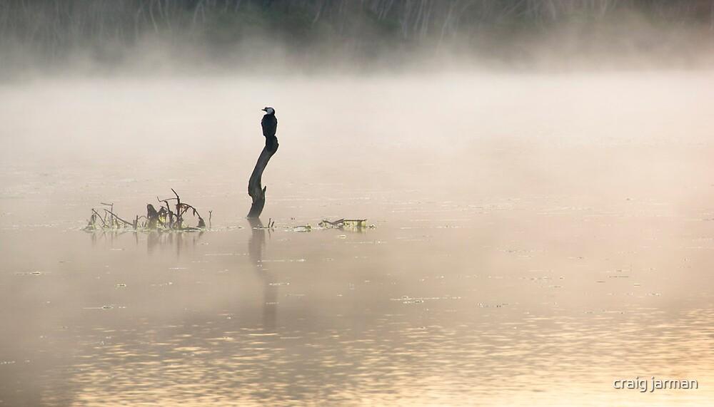 early bird by craig jarman