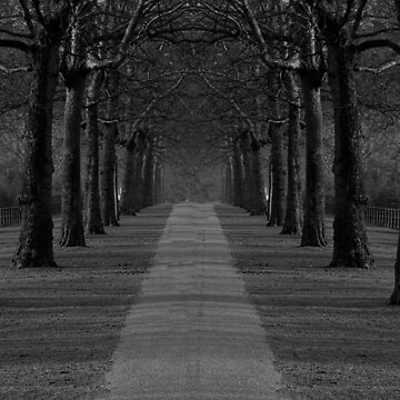 London Trees by sbosic