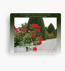 Red Roses for Love Canvas Print