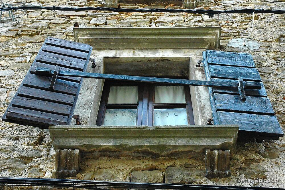 Windows & Shutters - 6 by Denis Molodkin