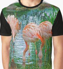 Flamingo Gathering Graphic T-Shirt