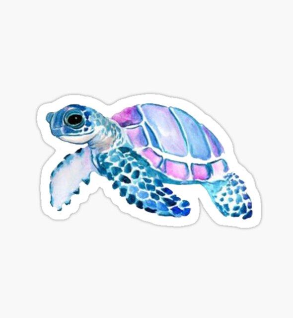 little turtle by stickersnstuff