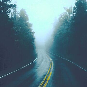 Winding Road by jgarnas