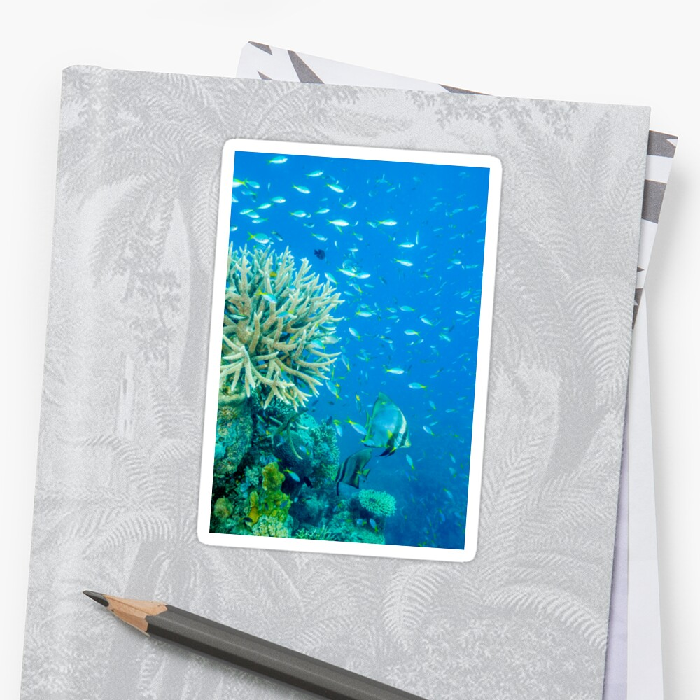 Reef scene Sticker