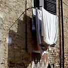Washday by Christina Backus
