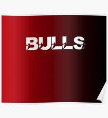 Chicago Bulls Basketball Team Poster
