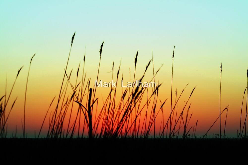 An Autumn Sunrise by Mark  Larlham
