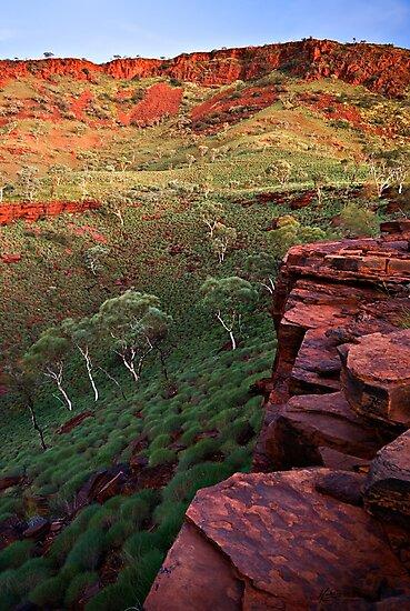 The Painted Pilbara by Mieke Boynton