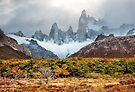 Autumn at Mt Fitz Roy by Mieke Boynton