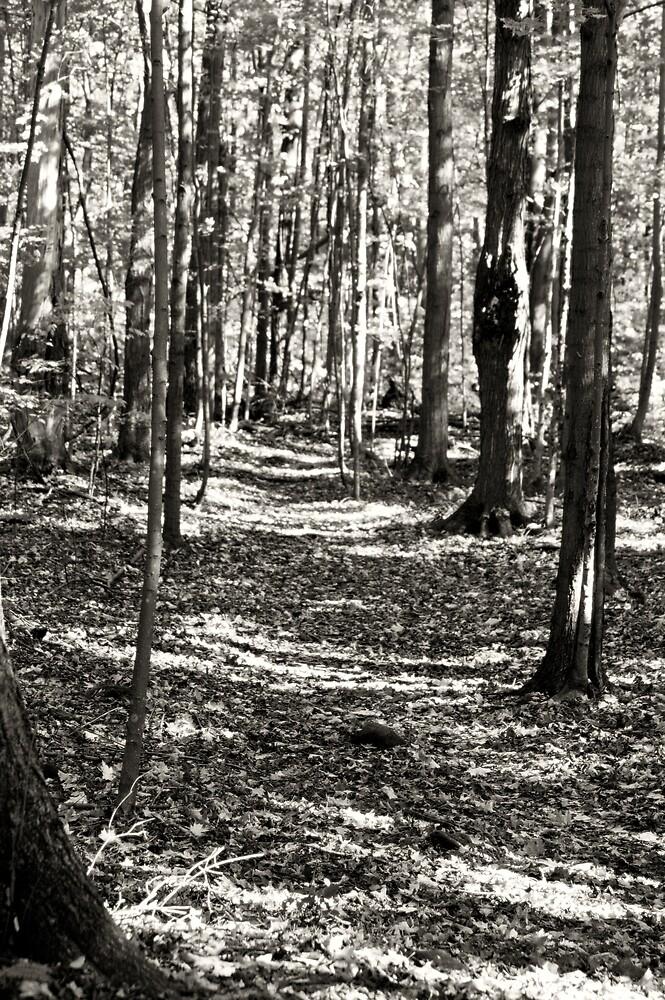Ghost Walk by WolfmanK