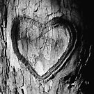 Tree Heart Black and White by Nathan Little