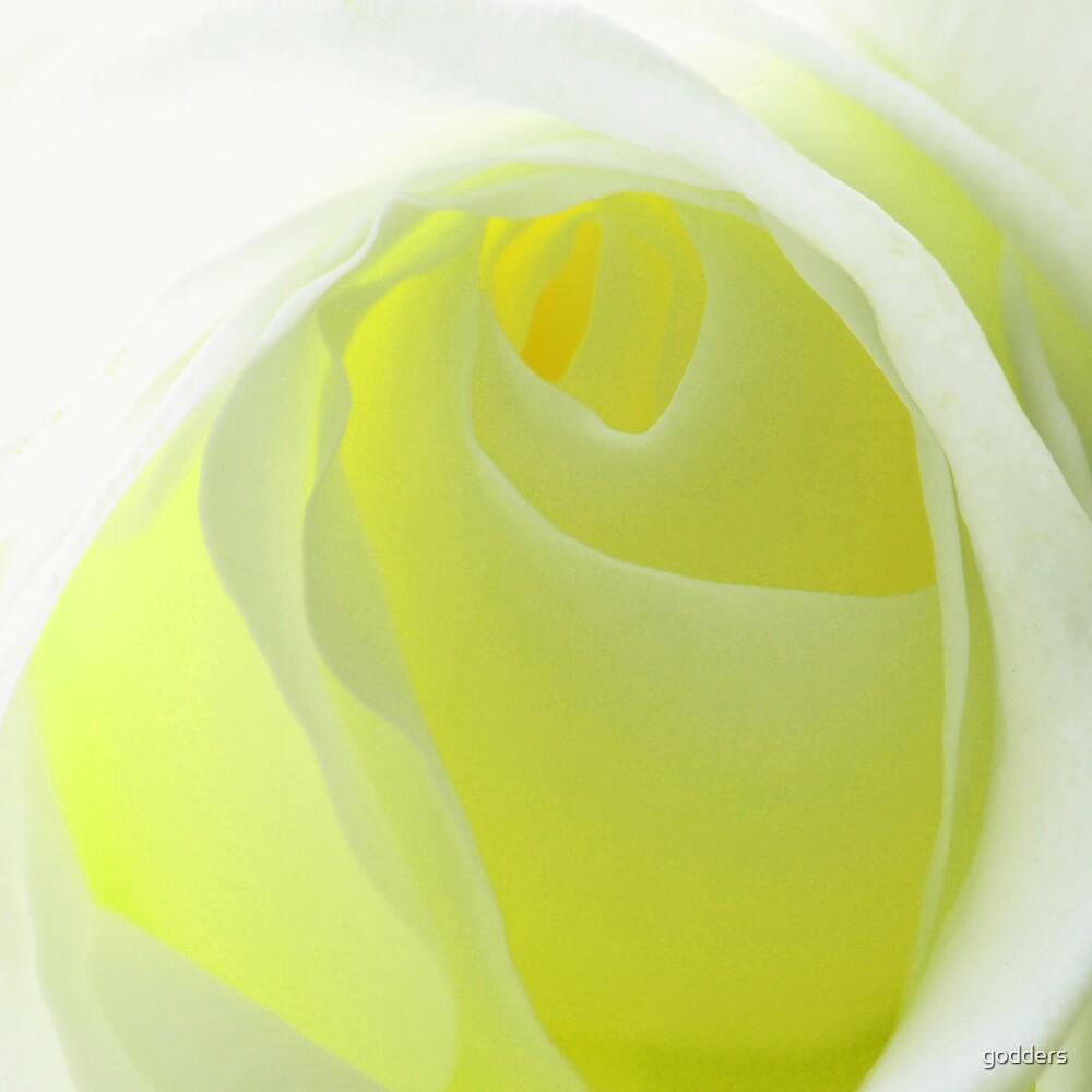 Lemon Ice ...... by godders