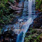 Empress Falls, Blue Mountains, New South Wales by Erik Schlogl
