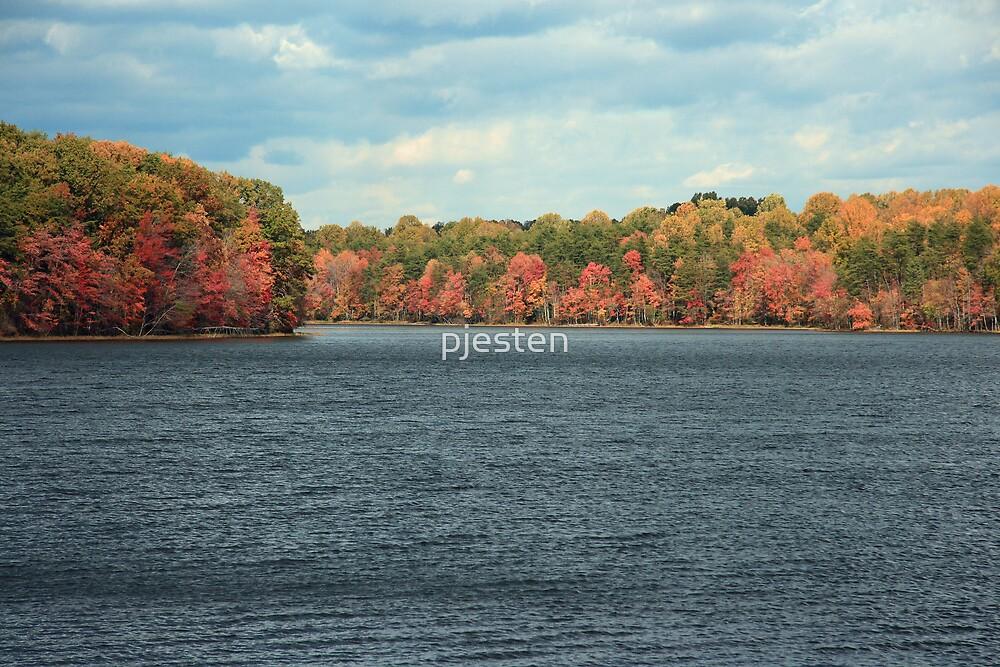 Burke Lake by pjesten
