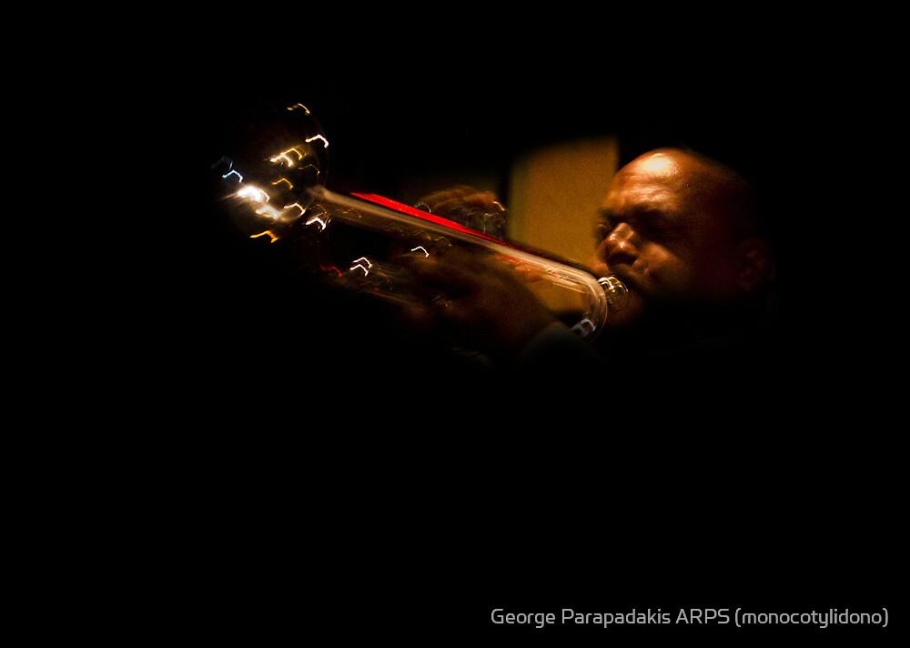 Blowing the night away... by George Parapadakis (monocotylidono)
