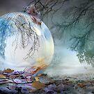November's Fall by Igor Zenin
