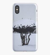 Christmas snow landscape scenic original art  iPhone Case/Skin