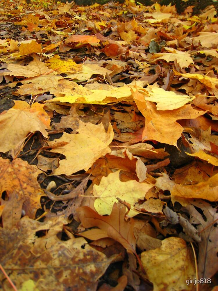 Autumn Leaves by girljo818
