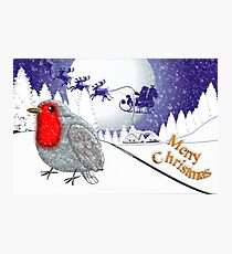 Merry Christmas from the Baby Robin  Photographic Print