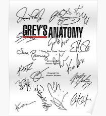 Grey's Anatomy Script Poster