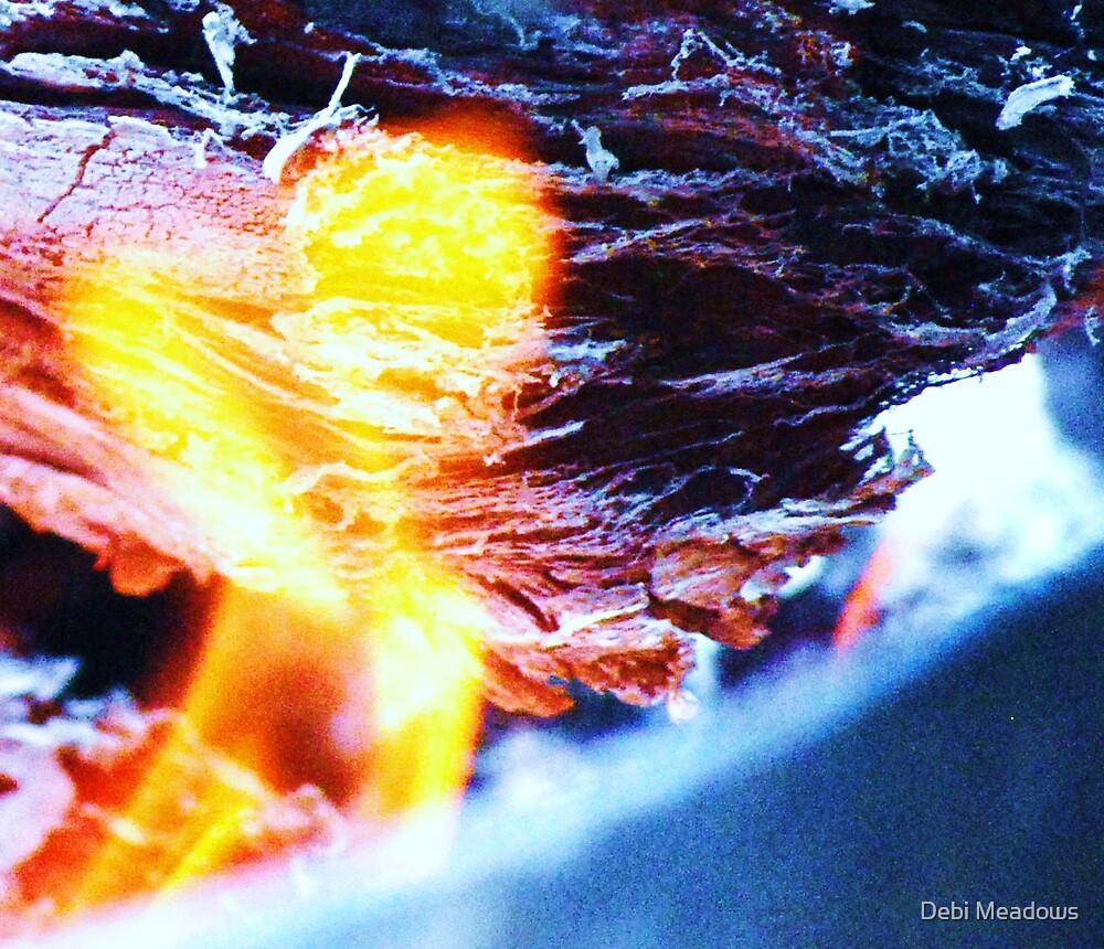 """Hearts Flame"" by Debi Meadows"