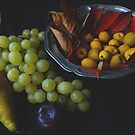 Autumn Fruit on Canvas by Gilberte