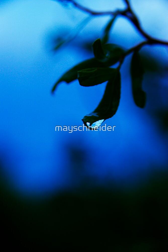 blue by mayschneider