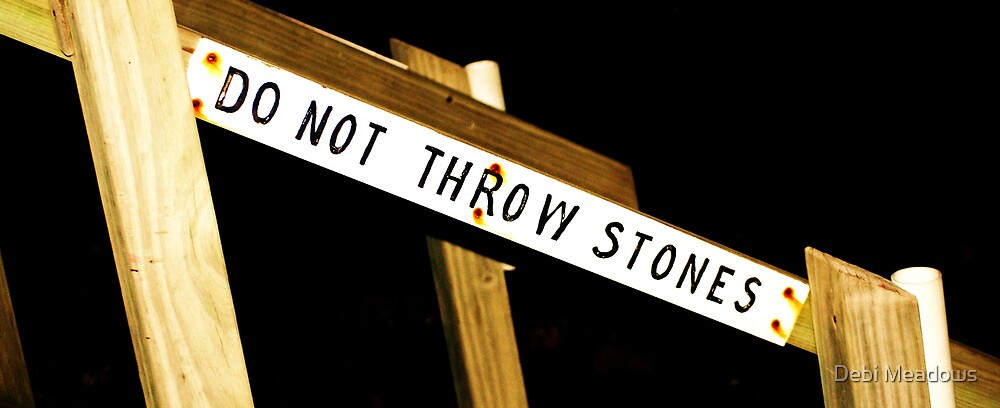 """""""Dont throw stones"""" by Debi Meadows"""