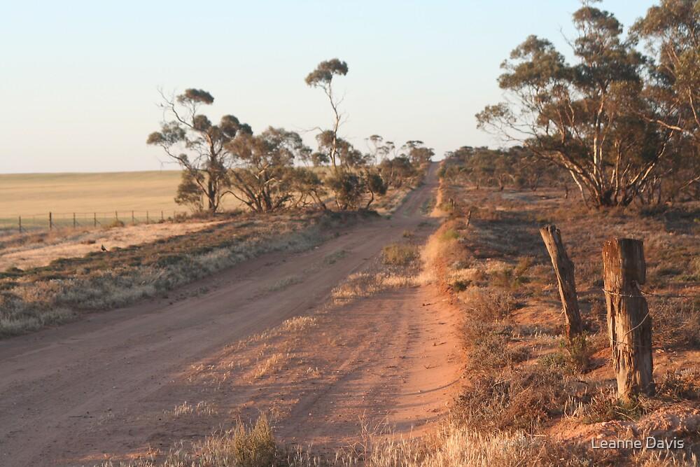 Bush track by Leanne Davis