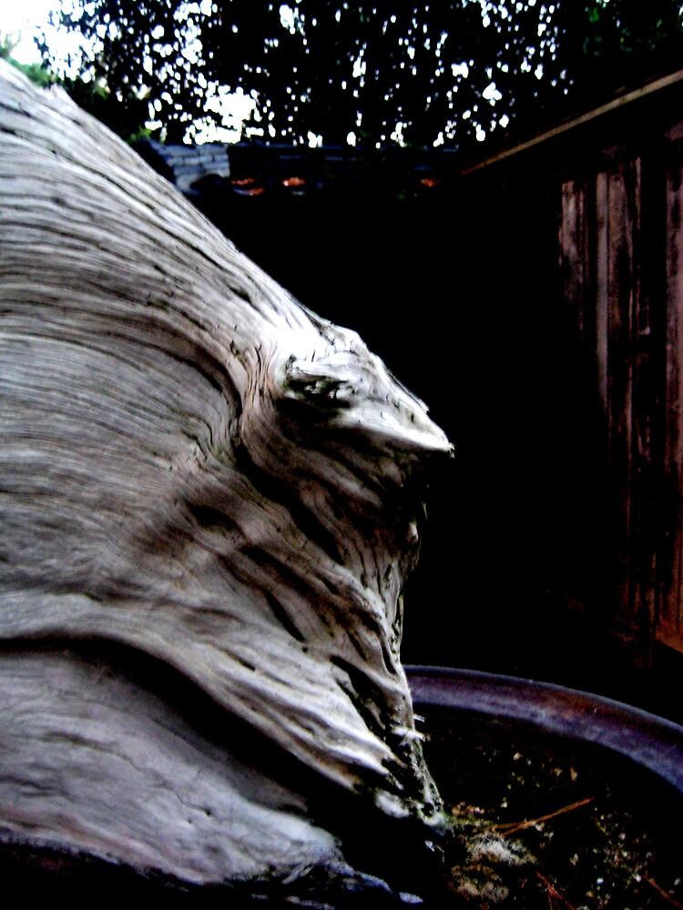 Lizard wood  by SamanthaJune