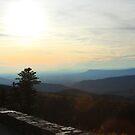 Blue Ridge by Paula Bielnicka