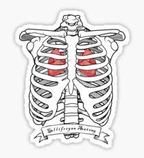 Gallifreyan Anatomy Sticker