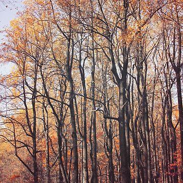 Autumn Breeze by pinkangel840